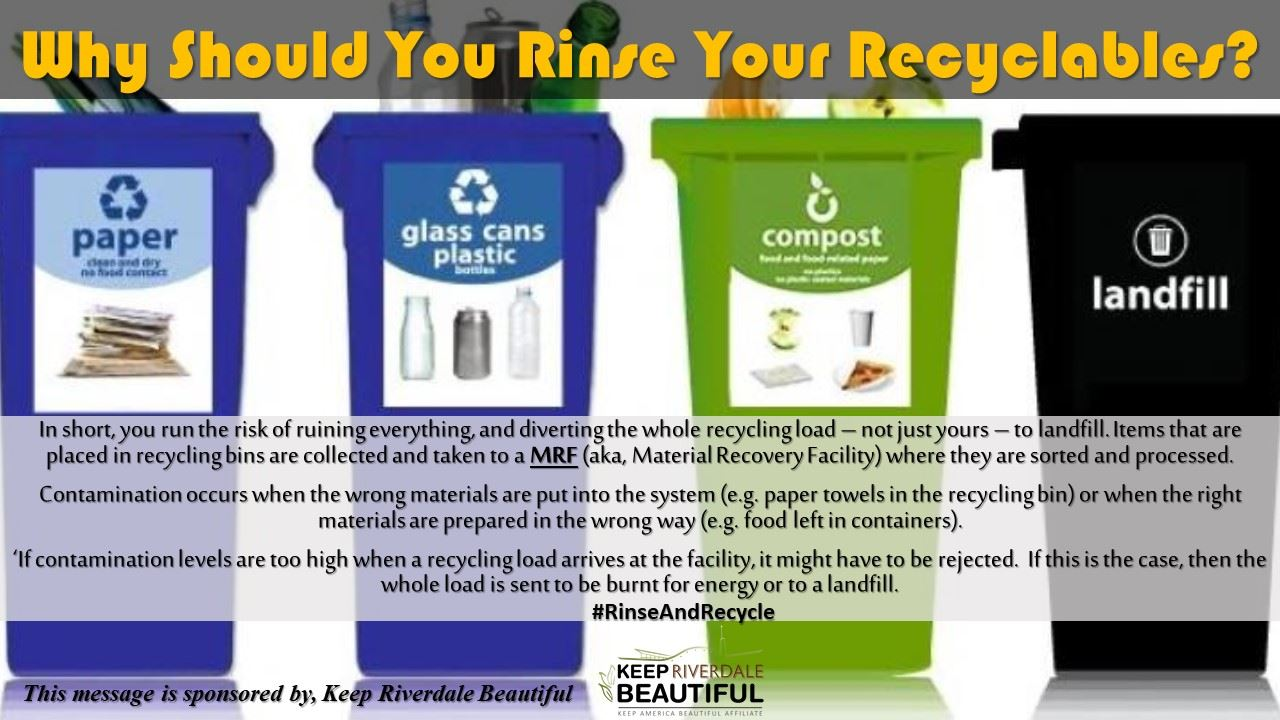 Why Should You Rinse Your Recyclables?
